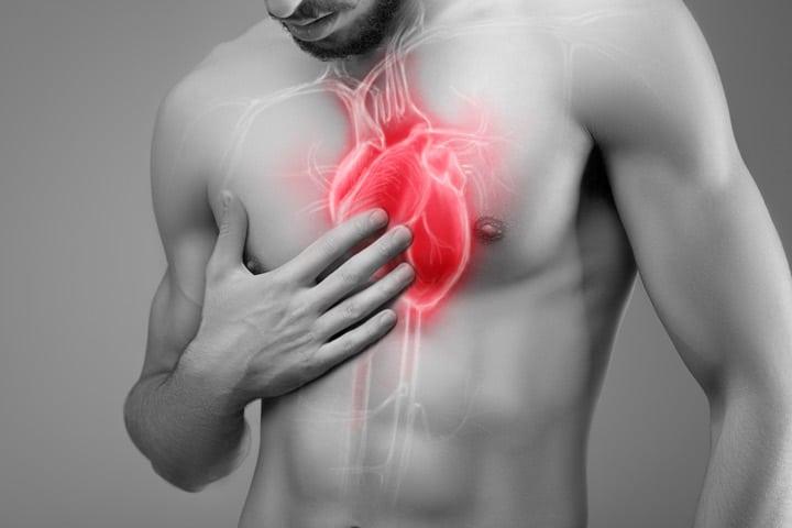Польза восковой мольи при заболеваниях сердца