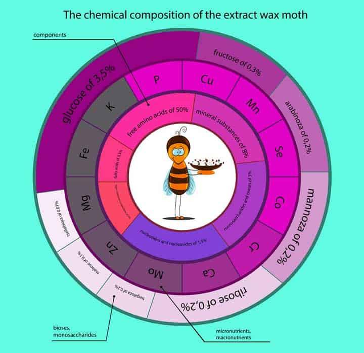 Химический состав восковой мольи